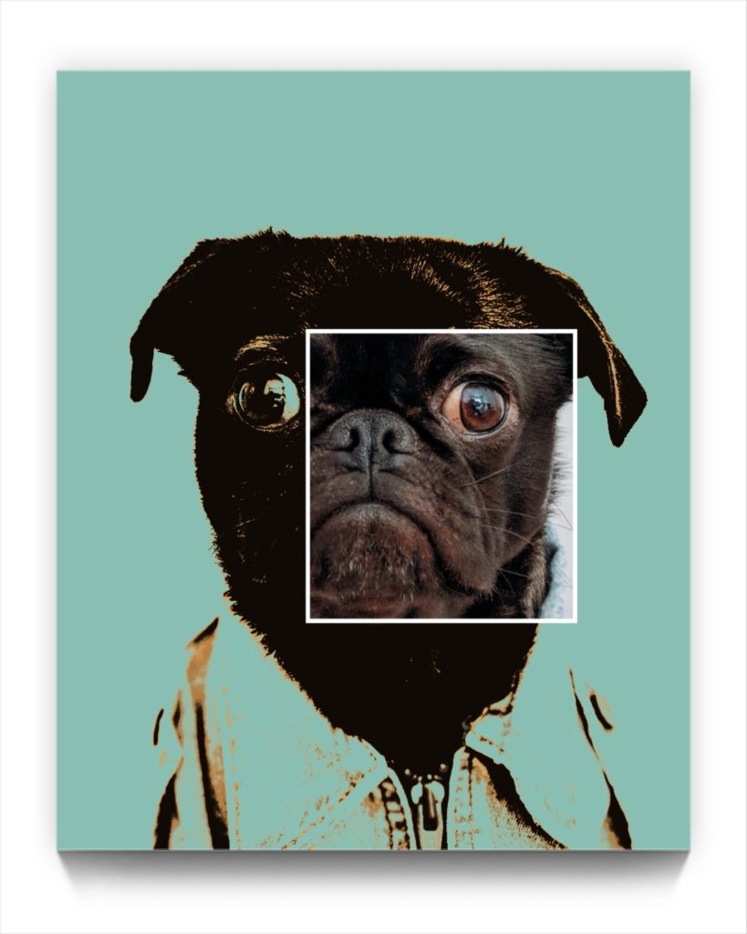 Pugsley . I don't do selfies by new media iPhone artist Mark Sedgwick