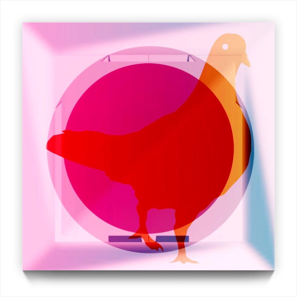 Pigeon Pi . digital figurative iphone abstraction