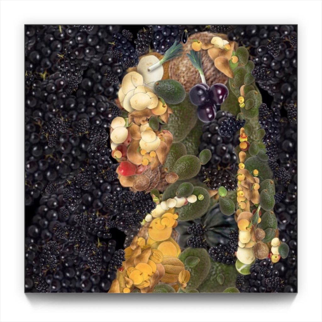 Johannes Vermeer'