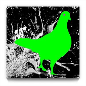 Pigeon Pi . figurative iphone abstract abstraction