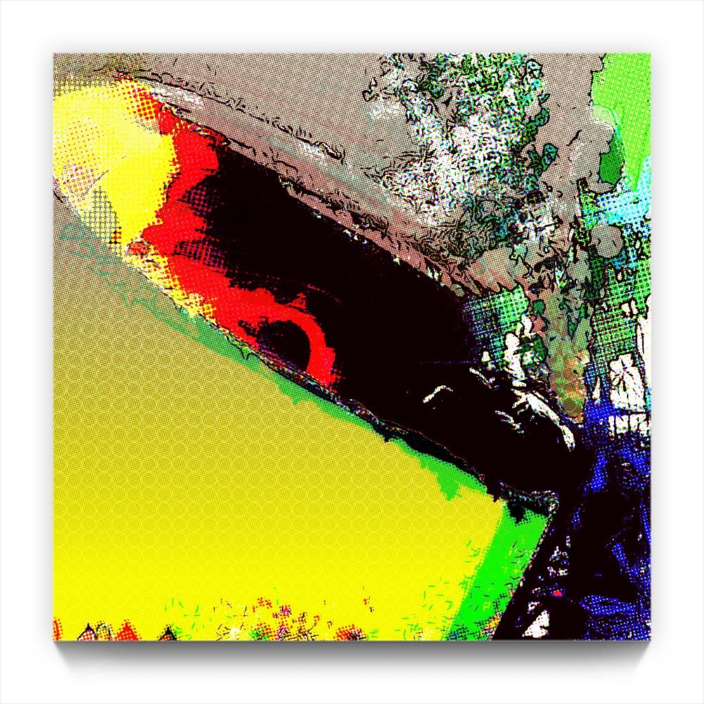 the vinyl series : Led Zeppelin . digital iphone netart