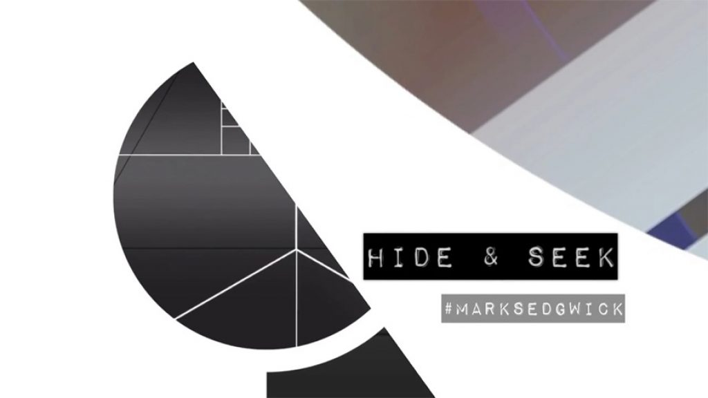 HIDE & SEEK . ART IN MOTION SEDGWICK